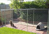 Exterior Dog Runs